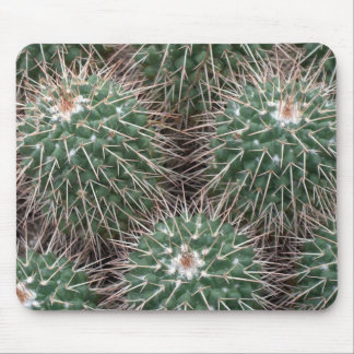 spiky cactus mouse pad