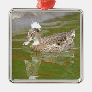 Spiky haired duck Silver-Colored square decoration