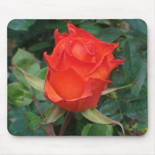 Spiky Orange Rosebud Mouse Mat
