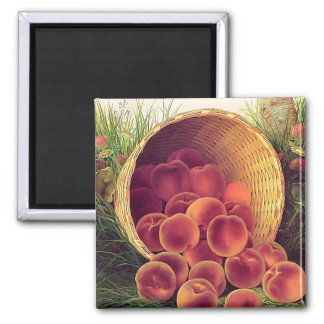 Spilled Peaches Refrigerator Magnet