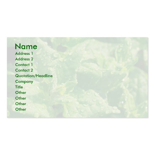 Spinach and raindrops business card templates