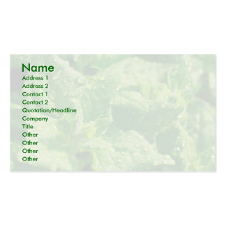 Spinach and raindrops pack of standard business cards