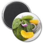 Spinach Mandarin Salad Magnet