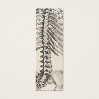 Spinal business card