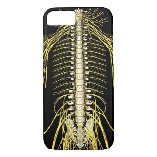 Spinal Nerves Anatomy Image Chiropractic iPhone 8/7 Case