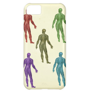 Spinal Nerves Phone Cover Cover For iPhone 5C