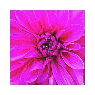 Spinderok - Pink Dahlia - Closeup Gallery Wrap Canvas