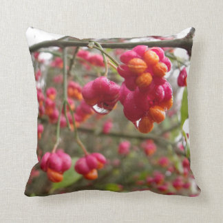 Spindle Fruit And Rain Drops Cushions