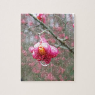 Spindle Tree And Water Droplet Jigsaw Puzzle