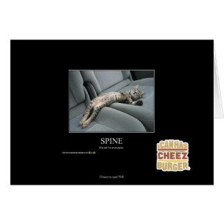 Spine Card
