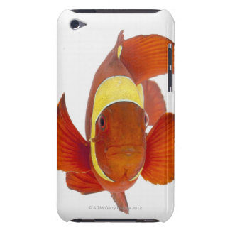 Spine-cheek anemonefish (Premnas biaculeatus) iPod Touch Covers