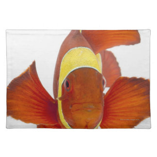 Spine-cheek anemonefish (Premnas biaculeatus) Placemat