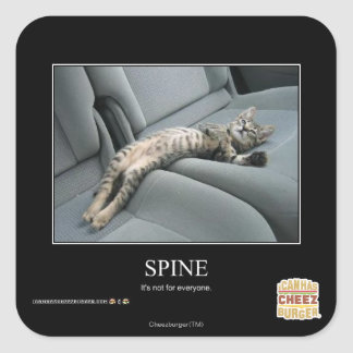 Spine Square Sticker