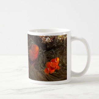 Spinecheek Anemonefish of the Coral Sea Coffee Mug