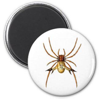 Spined Spider 6 Cm Round Magnet