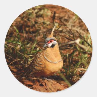 Spinifex Pigeon Round Sticker