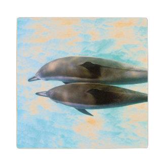Spinner Dolphins | Oahu Hawaii Wood Coaster