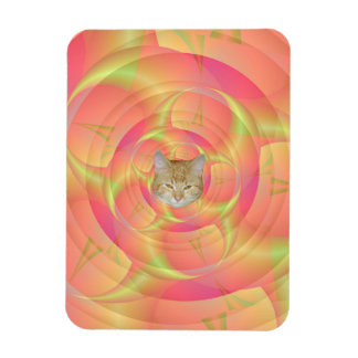 Spinning Horns in Pink and Yellow Rectangular Photo Magnet