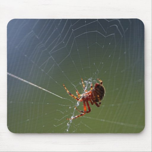 Spinning Spider Mousepads