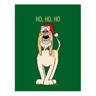 Spinone Italiano brightly Santa Postcard