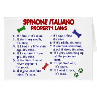 SPINONE ITALIANO Property Laws 2 Card