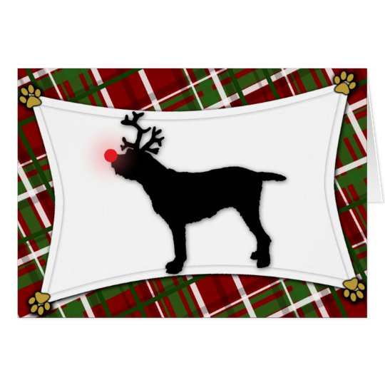 Spinone Italiano Reindeer Christmas Card