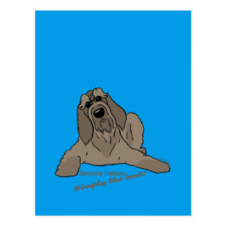 Spinone Italiano - Simply the best! Postcard