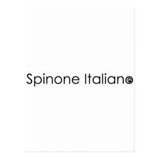 spinone postcard