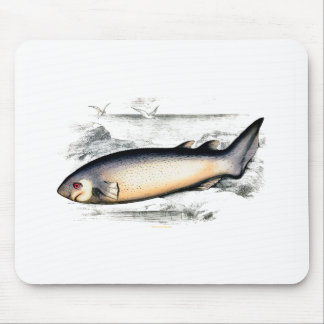SPINOUS SHARK MOUSE PAD