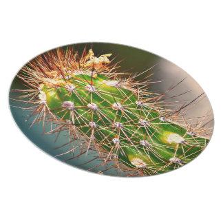Spiny Cactus Melamine Plate
