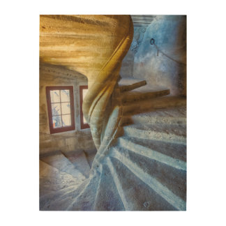 Spiral Castle Staircase, France Wood Wall Decor