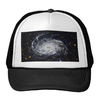 Spiral Galaxy Cap