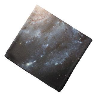 Spiral Galaxy (M101) Bandana