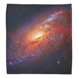 Spiral Galaxy M106 in Canes Venatici Kerchief