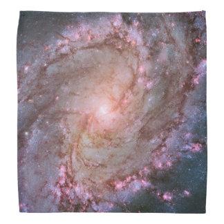 Spiral Galaxy M83 Bandannas