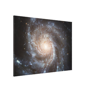spiral galaxy stretched canvas print