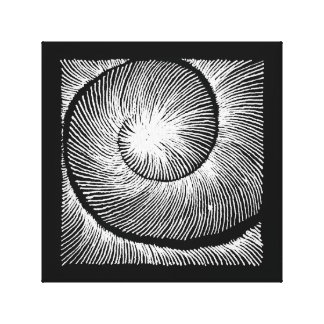 spiral shell canvas print