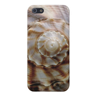 Spiral Shell iPhone 5/5S Cases