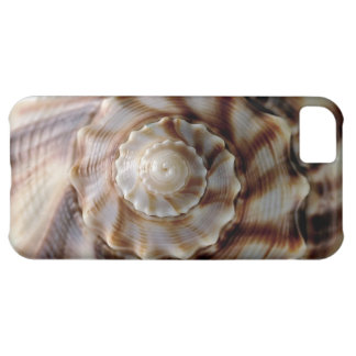 Spiral Shell iphone 5 Case