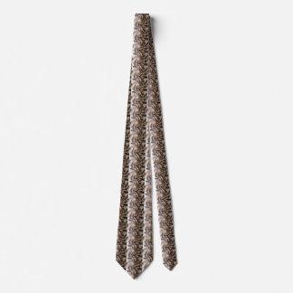 Spiral Shell Tie