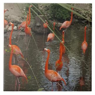 Spirit animal - Pink Flamingo from Florida tile