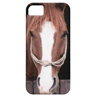 Spirit Barely There iPhone 5 Case