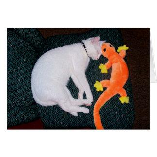 Spirit & Gecko Greeting Card