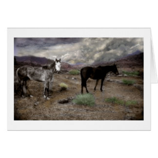Spirit Ponies on a High Country Plateau Greeting Card