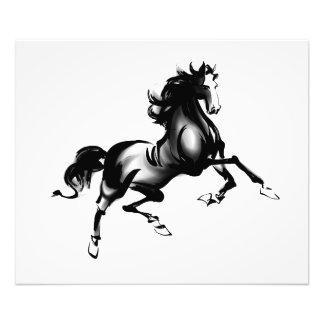 SPIRITED HORSE PHOTO PRINT