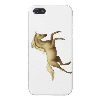 Spirited Palomino Horse iPhone Case iPhone 5 Case