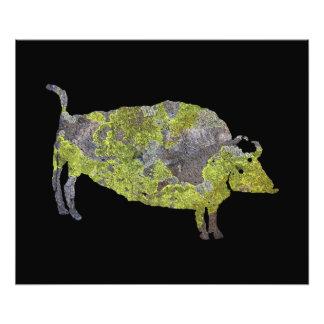 Spiritual Buffalo Petroglyph Photo