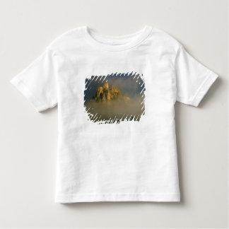 Spissky hrad in mist, Slovakia 2 Toddler T-Shirt