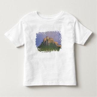 Spissky hrad in mist, Slovakia Toddler T-Shirt