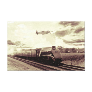 Spitfire and Mallard Canvas Print